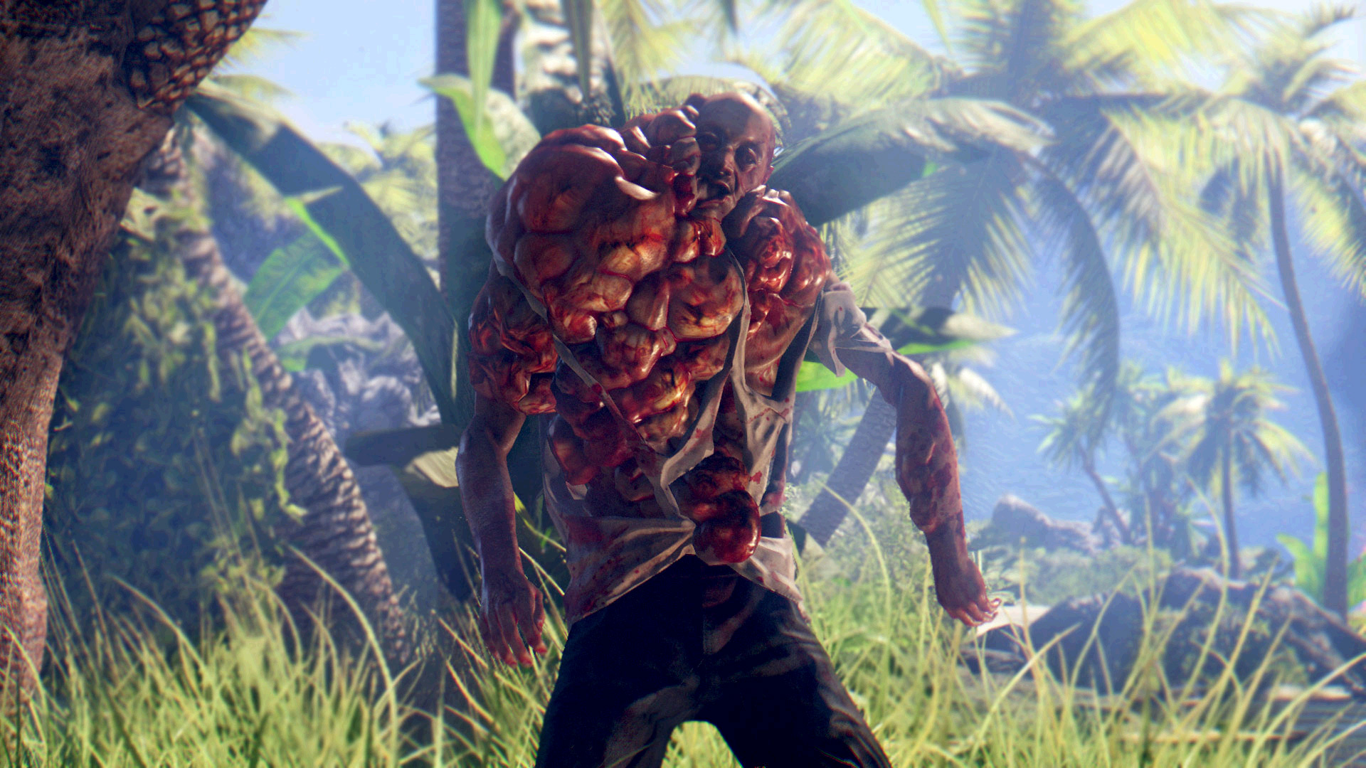 Is Dead Island Riptide Co Op